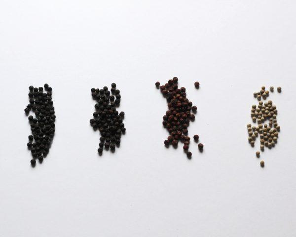 Pepe di kampot (nero, rosso scuro, rosso, bianco)