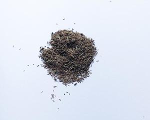 graines de cumin