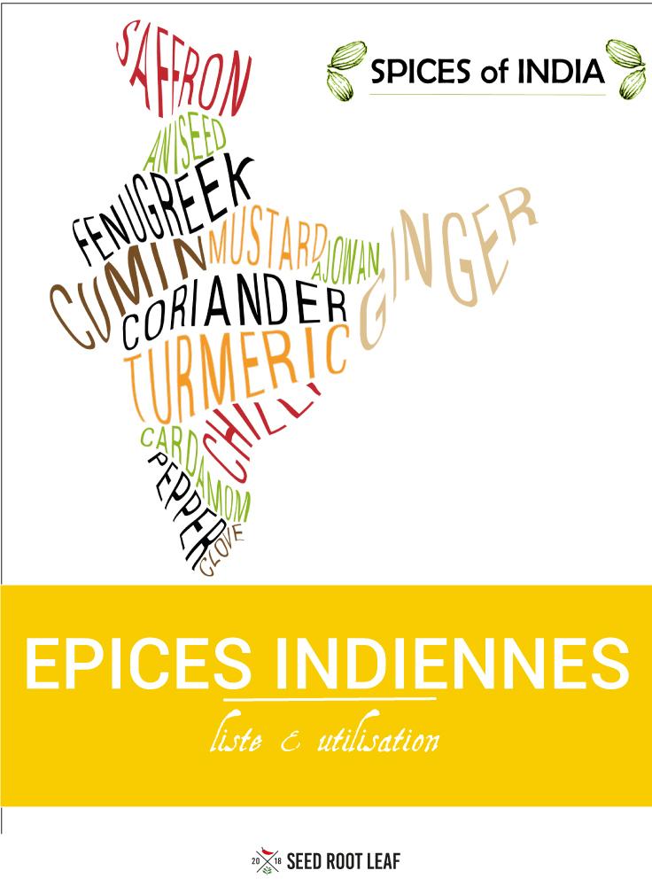 map des épices indiennes - liste et utilisation - pour pinterest