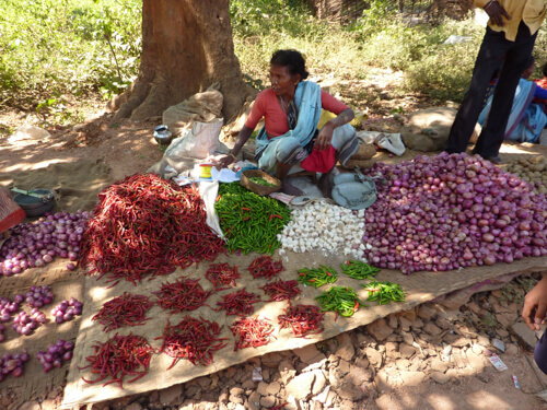 Woman selling chillies in Orissa (India)